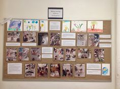 Bulb and Seed Inquiry documentation board display