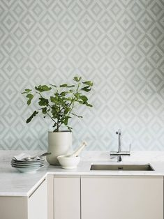 Wallpaper Shades Tourmaline from the collection Shades of Chalk. A beautiful one-colored wallpaper in gray-green tones with an aged patina from Boråstapeter. Classic Wallpaper, Grey Wallpaper, Kitchen Wallpaper, Dining Room Inspiration, Floor Rugs, Green And Grey, Interior Decorating, Shades, Feelings