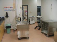 Dakota Veterinary Hospital - Veterinarian In Winnipeg, Manitoba Canada :: Home Set Up An Appointment, Veterinarians, Canada, Home Decor, Homemade Home Decor, Decoration Home, Interior Decorating