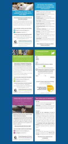 Tracts sur l'adoption, l'appel aux dons et la stérilisation pour l'association L'école du chat libre de Bordeaux  http://www.ecole-du-chat-bordeaux.com/ #cats #association