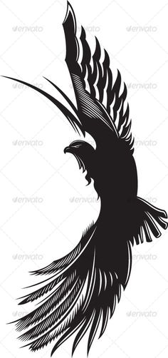 Making this into a logo by offsetting the eagle to the right on the side of a ci. - Making this into a logo by offsetting the eagle to the right on the side of a circle would be aweso - Freedom Bird Tattoos, Eagle Feather Tattoos, White Bird Tattoos, Black Bird Tattoo, Tattoo Bird, Black Eagle Tattoo, Tattoo Eagle, Tattoo Wings, Bird Tattoo Meaning