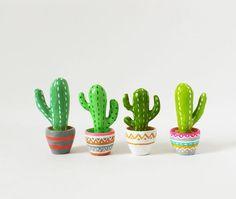 Cactus decorativos