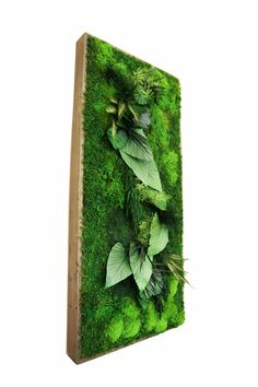 https://www.etsy.com/listing/242175094/40-x-18-large-plant-painting-no-care?ref=shop_home_active_15