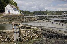 Port du Belon | Finistère Bretagne