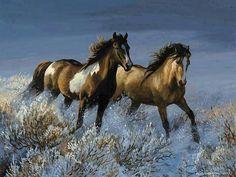 Mustangs....