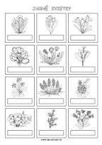 Výsledok vyhľadávania obrázkov pre dopyt jar príroda omalovanky