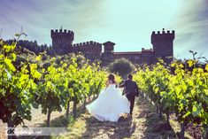 Napa Valley wedding pictures - castello di amorosa