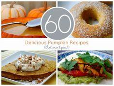 60 Delicious PUMPKIN RECIPES - DIY Vintage Chic: Friday's Five Features ~ No 59.