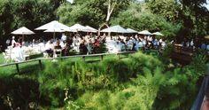 Weddings :: See Canyon Fruit Ranch – See Canyon Wedding