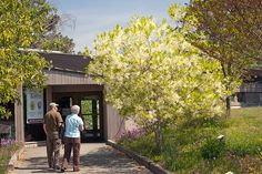 Strolling to the Visitor's Center, York River State Park, Spring 2012
