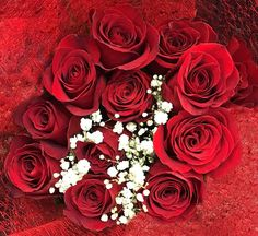 """Happy Valentine's Day #roses #redroses #valentines #wouldyoubemyvalentine #love #macro #bouquet #red #iphone #iphone6sphotography #macrophotography #pictureoftheday by sabaroushan Follow """"DIY iPhone 6/ 6S Cases/ Covers/ Sleeves"""" board on @cutephonecases http://ift.tt/1OCqEuZ to see more ways to add text add #Photography #Photographer #Photo #Photos #Picture #Pictures #Camera #Only #Pic #Pics to #iPhone6S Case/ Cover/ Sleeve"""