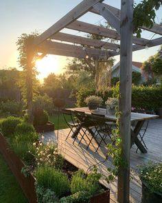 Instagram Gazebo, Pergola, Garden Spaces, Garden Inspiration, Garden Ideas, Cactus, Bloom, Yard, Outdoor Structures