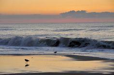 100 Maryland Places -- Assateague Island National Seashore