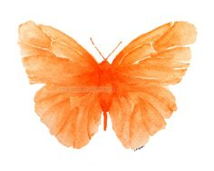 Orange Butterfly ~ Watercolor by Carol Sapp
