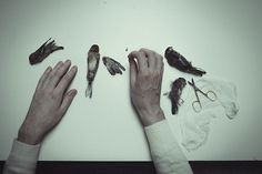 The Anatomy Of Melancholy by Laura Makabresku