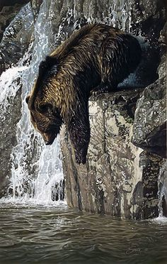 Bear reaching for fish (?) in the river