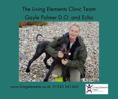 This is the current Living Elements Clinic team of Gayle and Echo (the recptionist!) #OsteopathyWorks Make an appointment TODAY for pain relief and better health. www.living-elements-clinic.cliniko.com/bookings Health Advice, Health And Wellness, Better Health, Health Coach, Pain Relief, Clinic, Coaching, Books, Training