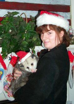 Pin by Marie Warren Horne on My Fur Babies | Pinterest | Opossum ...