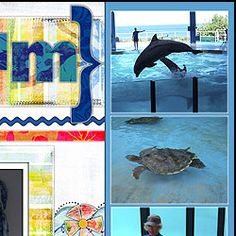 aquarium scrapbook page ideas - Google Search