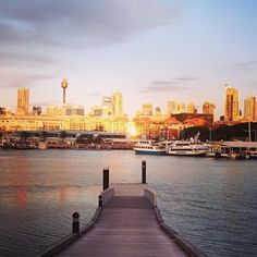 Glebe Foreshore walk. | 26 Sydney Walks That Will Take Your Breath Away