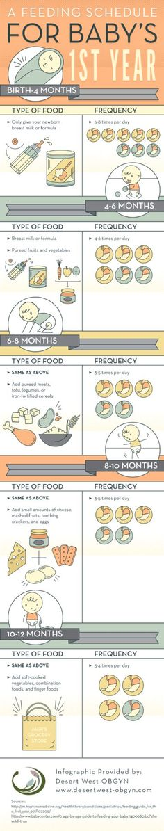 Start feeding your baby between 3 and 5 times each day when he reaches 6 months of age. You can introduce him to pureed meats, tofu, legumes, or iron-fortified cereals during this time! Learn more by viewing this Phoenix baby feeding chart infographic. Baby On The Way, Baby Kind, Baby Led Weaning, Bebe Love, Baby Feeding Schedule, Baby Eating, Babies First Year, 1st Year, Pregnancy