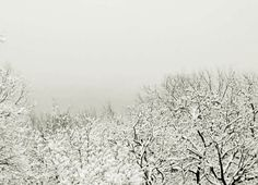 The silence of falling snow by Matild Mihályi Snow, Fall, Photos, Outdoor, Autumn, Outdoors, Pictures, Fall Season, Outdoor Games