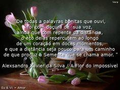 A flor do impossível Alexsandro Xavier da Silva