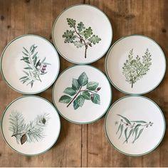 Plate Wall Decor, Plates On Wall, Talavera Pottery, Ceramic Pottery, Plate Art, Diy Rings, Dining Room Walls, Plate Design, Ceramic Decor