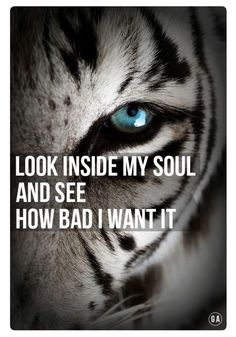 Success Motivational Quotes Your goals don't care how you feel. You can literally create your dream life if you beli. Tiger Quotes, Lion Quotes, Star Quotes, Crazy Quotes, Badass Quotes, Music Quotes, Motivational Quotes, Funny Quotes, Inspirational Quotes