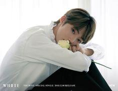 THE BOYZ dévoile de nouvelles photos teasers individuelles pour « WHITE Jeonju, Shinee, New Boyz, Person Icon, Winner Ikon, What Is Coming, Kingdom Come, Picture Credit, Kpop