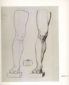 Copying a Charles Bargue Lithograph Human Drawing Reference, Drawing Practice, Anatomy Reference, Life Drawing, Figure Drawing, Art Reference, Drawing Legs, Drawing Faces, Anatomy Study