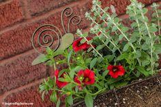 he's too stinking cute! Love Garden, Dream Garden, Home And Garden, Amazing Gardens, Beautiful Gardens, Garden Inspiration, Garden Ideas, Lawn Ornaments, Enjoying The Sun