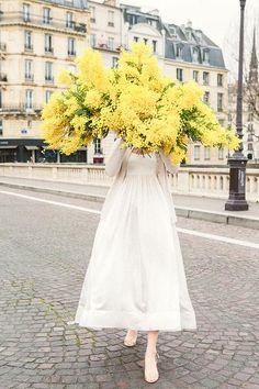 Late For Love - Mimosa Ile St Louis Paris