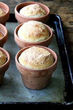 About a month ago a friend texted me a photo of an adorable loaf of bread baked in a flowerpot She was at Terrains garden café in Westport CT which looks as magica. Bread Toast, Bread Mix, Kreative Snacks, Bread Recipes, Cooking Recipes, Peasant Bread, No Rise Bread, Four A Pizza, Bread Rolls