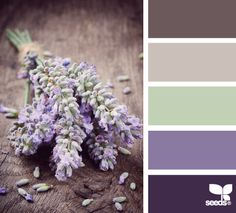 lavender tones I love the lightest of greens hidden within the lavender palette. Decoration Inspiration, Color Inspiration, Colour Schemes, Color Combos, Colour Palettes, Color Lavanda, Lavender Green, Lavender Color Scheme, Purple Palette