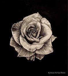 Photorealism black and grey rose artwork. #roses #rosetattoo #rose #sullenclothing #art #artwork #artist #blackandgrey #vogue #inked #ink #tattoo #tattoos #draw #drawing #artsy #europe #westcoast #photorealism #realism #flower #cali #la #beauty #kimkardashian #fashion #style #socal #pen #3d