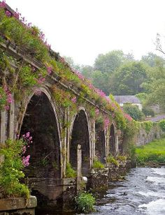 Inistioge Bridge in County Kilkenny, Ireland. Love the flowers climbing all over the bridge. Oh The Places You'll Go, Places To Travel, Places To Visit, Beautiful World, Beautiful Places, Beautiful Flowers, Old Bridges, To Infinity And Beyond, England