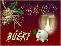 Merry Christmas: Happy New Year 2015