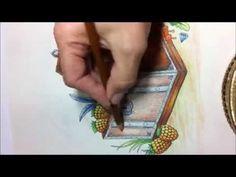 Jardim Secreto 5 Tecnicas De Pintura