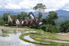Tana Toraja Trekking, malerische Doerfer inmitten von Reisfeldern