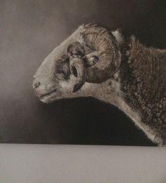 Artist Painting, Figure Painting, Lamb Pictures, Workshop Ideas, Animal Paintings, Sheep, Art Work, Dutch, Watercolor