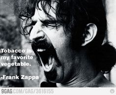 Just a Frank Zappa quote