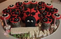 Lady Bug Cake And Cupcakes Little Miss Cupcake Baby Shower Cupcake Cake, Miss Cupcake, Cupcake In A Cup, Cupcake Cakes, Ladybug Cakes, Ladybug Party, Bug Birthday Cakes, Birthday Ideas, Birthday Cupcakes