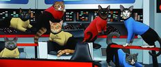 """It's a five-year mission: to explore strange new worlds, to seek out new cat ladies and new civilizations of cat ladies........Evil!!!!  To purr where no cat has ever purred before. """" We thought the klingons were bad."""""""