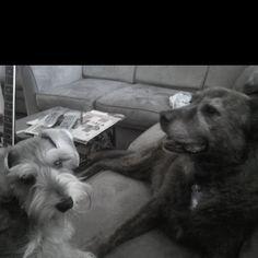 Kaya & Jaxcee