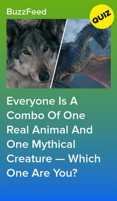 Everyone Is A Combo Of One Real Animal And One Mythical Creature — Which One Are You? Everyone Is A Combo Of One Real Animal And One Mythical Creature — Which One Are You?<br> Are you a cat-icorn or a mer-dog? Quizzes About Boys, Fun Quizzes To Take, Dog Quizzes, Random Quizzes, What's My Spirit Animal, Whats Your Spirit Animal, Which Dog Are You, What Animal Are You, Personality Quizzes For Kids
