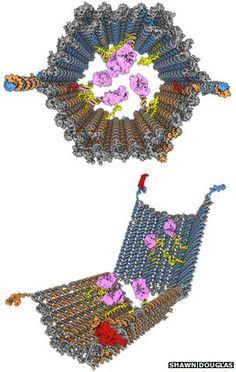 """DNA robot targets cancer cells""  Say whaaaa?!"
