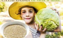 BRIOȘE integrale fără zahăr, cu nuci și BANANE, de post Sciatica, Natural Remedies, Cabbage, Medical, Vegetables, Desserts, Food, Deserts, Banana