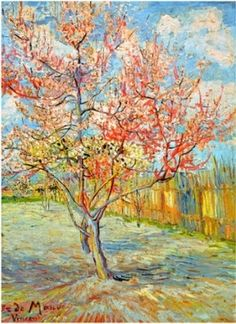 Van Gogh... Today I'm into pink, peach, aqua and blue, gold and white, raspberry and blackcherry.