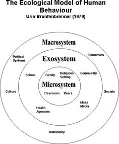 Erik Erikson's 8 Stage Psychosocial Theory: Helps explain